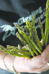 Slender Asparagus Spears caressed by a blanket of foaming nutty butter…by Jenny Morris