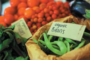 Gaia Food Market has a new home