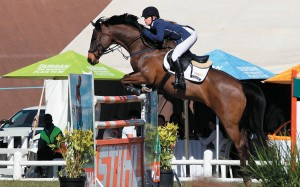 World Cup Show Jumping Qualifier promises spectacular horsemanship