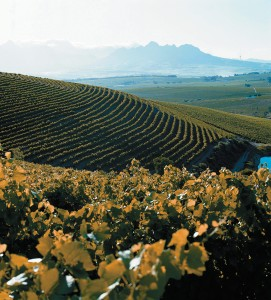 Wine with heart: Jordan caps a stellar year