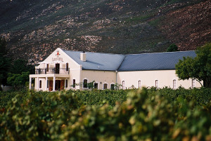 Wine with heart: Slanghoek – a beautiful discovery