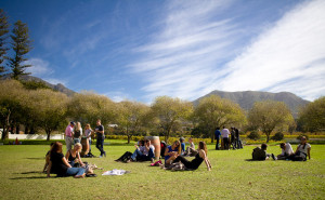 Constantia Food and Wine Festival this weekend