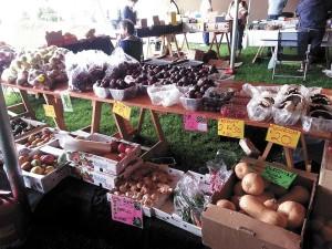 Local is lekker at Natural Goods Market
