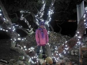 Winter Wonderland Carnival in Gordon's Bay