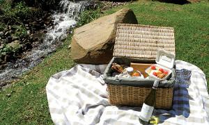 Delheim Estate goes green with riverside picnics
