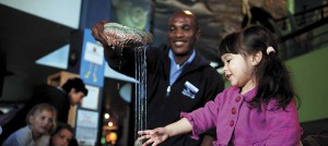 Holiday fun at the Two Oceans Aquarium