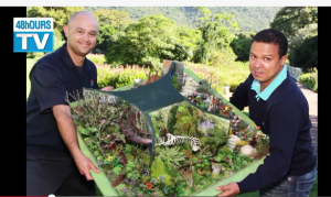 48hOURSTV – The Kirstenbosch Chelsea Flower Show exhibit launch