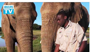 48hOURSTV visits the Elephant Park Sanctuary in Plettenberg Bay