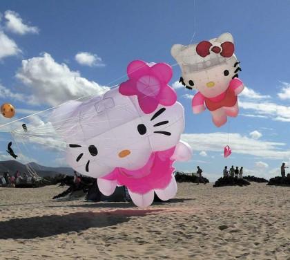 Africa's biggest kite festival – Cape Town International Kite Festival