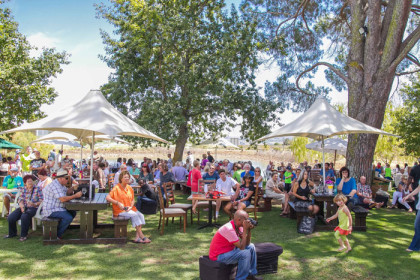 A Sunday Winelands wind down on the lawn