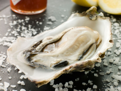 The Oyster, Wine & Food Festival for Montecasino
