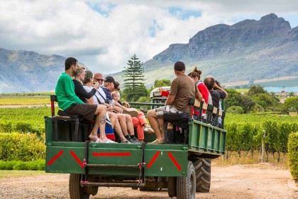 Ease into summer with a complete wine farm experience