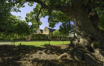 Heritage Month: Five reasons to visit historic Vergelegen Estate