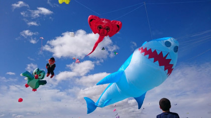 the-eccentric-and-appealing-kite-festival-is-on-this-weekend