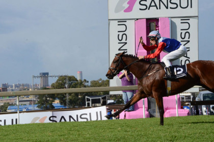 expect-photo-finishes-galore-at-this-years-sansui-summer-cup