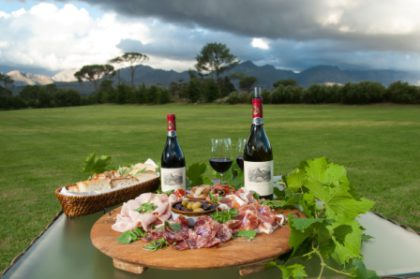 Shiraz & Charcuterie celebration in Franschhoek