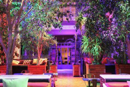 Chilled cocktail and DJ mash-up at new Botanik Social House