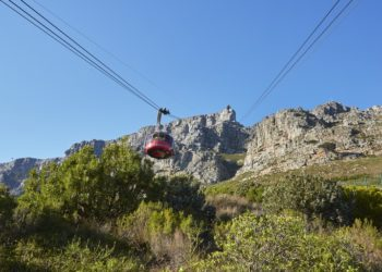 Do your bit for Table Mountain